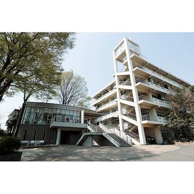 図書館「東京立正短期大学図書館まで348m」