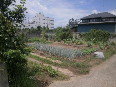 【外観】熊谷市久保島 280万 土地