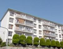 垂水高丸住宅一号棟の画像
