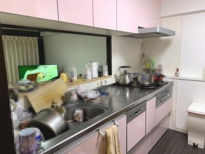 食洗機を搭載した対面式キッチンです。カウンターも付いているため、ダイニングへの配膳もスムーズです◎