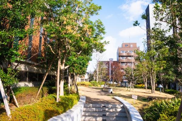 【共用部分】贅沢にもサラウンドガーデンが敷地面積の約52%を占めており、日常的に四季を感じていただけます。