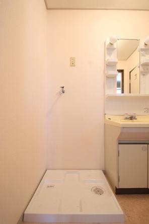 A203 室内洗濯機置場