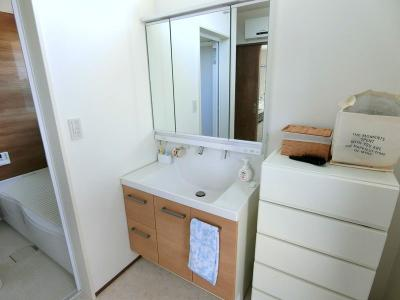 洗面台は3面鏡タイプの洗面台になります。ハンドシャワー水栓もついているので、洗面台の掃除もラクラク♪