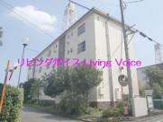 茅ヶ崎市松林1丁目 松林住宅2号棟 中古マンションの画像