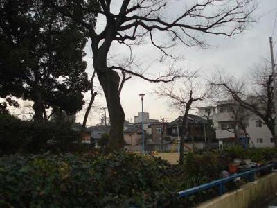 酒君塚公園まで260m