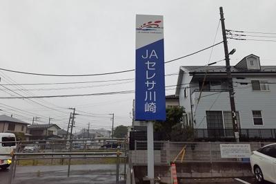 JAセレサ川崎東柿生支店まで400m
