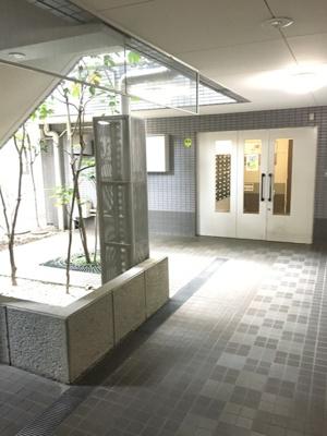 【エントランス】ステラコート横浜白楽