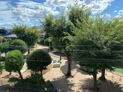 窓からは公園が見えます。
