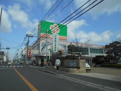 ライフ 深井店 575m