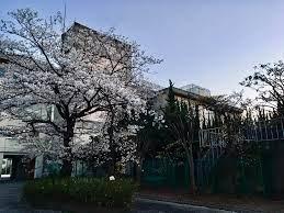 松戸市立第一中学校みらい分校