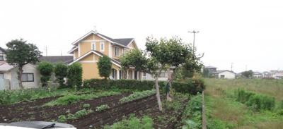 家庭菜園で利用されていました外観です(7月11日撮影)