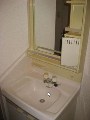 独立洗面化粧台が付いています