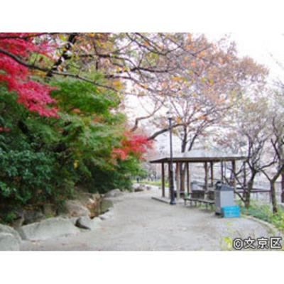 公園「江戸川公園まで720m」