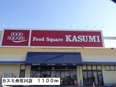 カスミ舟石川店まで1100m