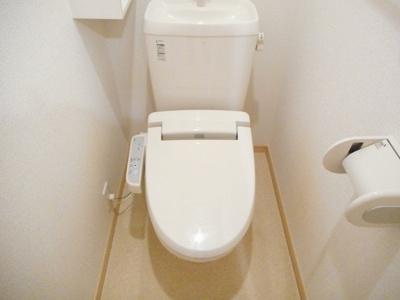【トイレ】レインボーローズ