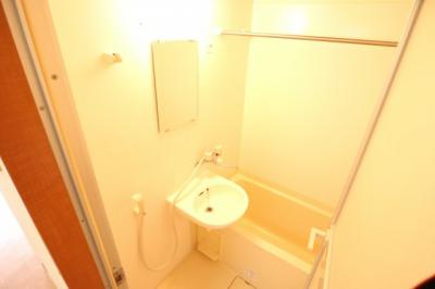【浴室】Lupinus