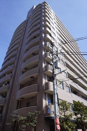6階部分の南西向き角部屋にて通風良好 大切なペットと一緒に暮らせます 新規内装リフォーム