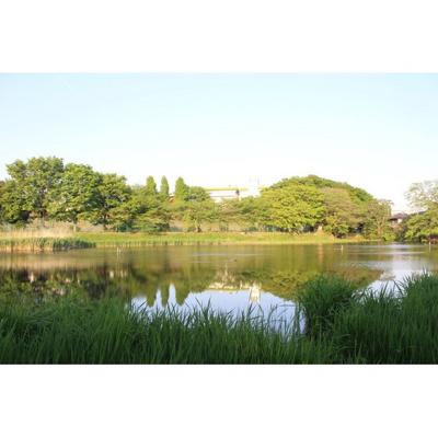 公園「白幡緑道まで1453m」