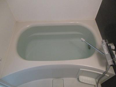 【浴室】パラゴン松