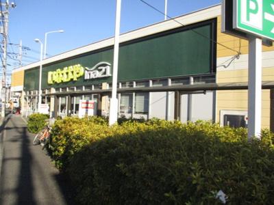いなげや松戸新田店(362m)