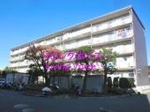 平塚市東八幡3丁目 平塚ニューライフ参号棟 中古マンションの画像