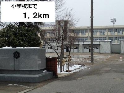 藤ノ木小学校まで1200m