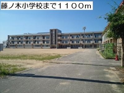 藤ノ木小学校まで1100m