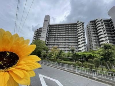片町線 住道駅から徒歩11分の立地にある大型マンションです☆