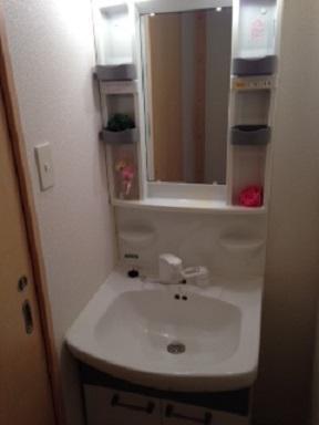 シャワー付洗面♪
