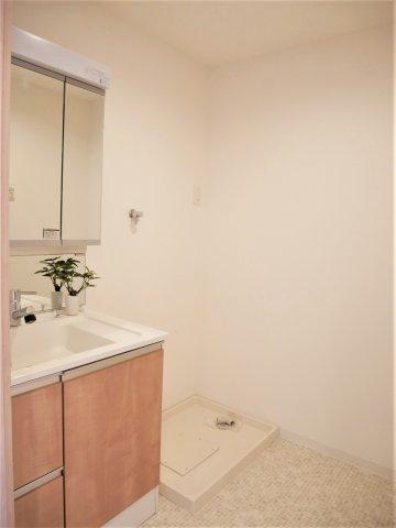 洗面化粧台の横に洗濯機置き場があります。