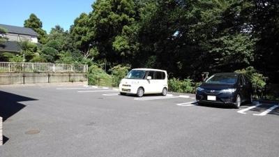 【駐車場】セレスタ