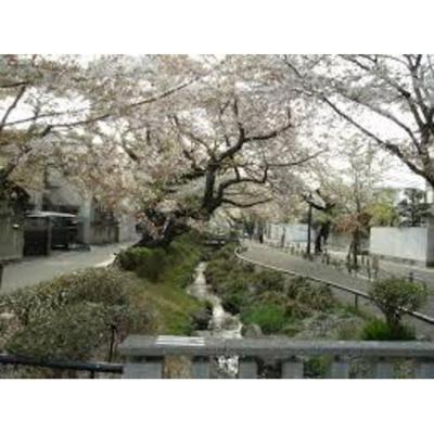 公園「北沢川緑道まで615m」