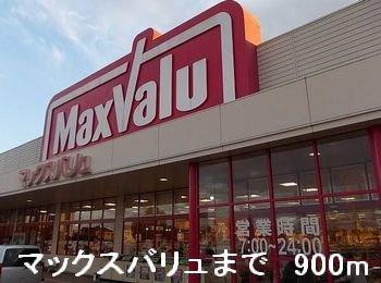 マックスバリュまで900m