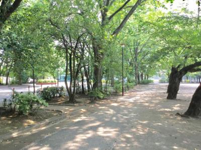 成増北第一公園