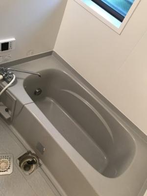 【浴室】花水木B