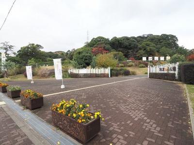 到津の森公園まで1300m