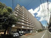 コープ野村大手町Ⅱ(No.7071)の画像