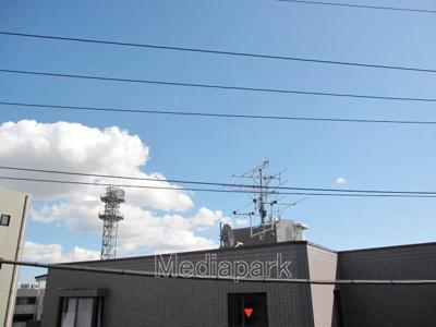【展望】マッシュルーム77