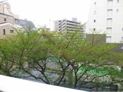 【展望】シティインデックス板橋