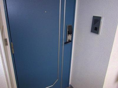 玄関ドア(同一仕様写真)
