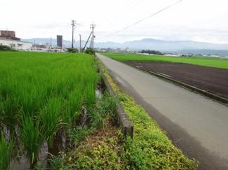 物件より南側は田畑が広がる南面道路含む周辺写真です