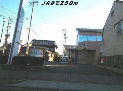 JAまで250m