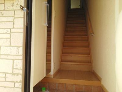 【玄関】ストレリチア ジャンセア
