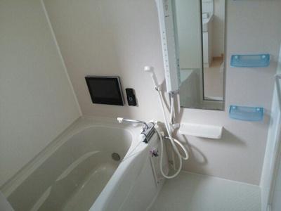 【浴室】ストレリチア ジャンセア