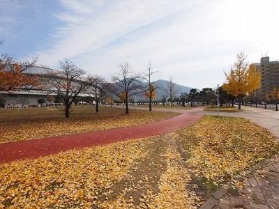 三萩野公園・メディアドームまで300m