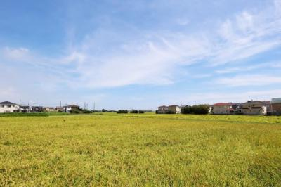 お家の裏側は田園風景が広がっております!
