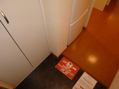 【玄関】レオパレス茶ノ木
