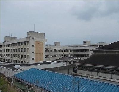 今治市立桜井小学校まで1000m
