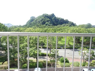 現地からの緑豊かな眺望です♪