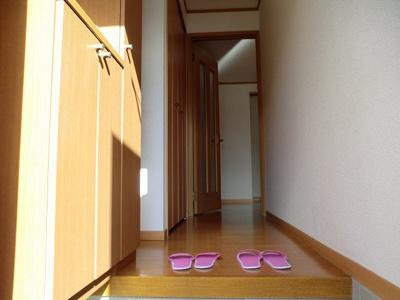 【収納】アプリコット・トゥリー